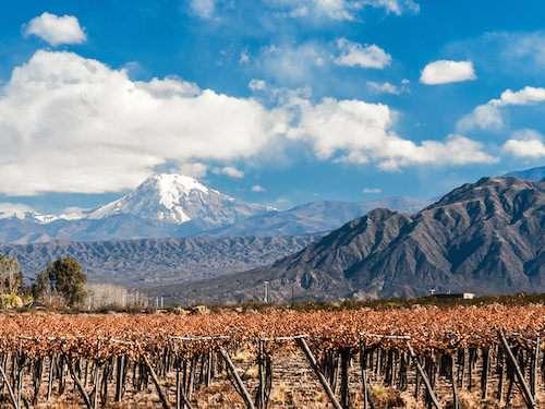 Mendoza vineyard views unreal itinerary