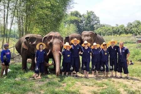 Group Elephant Sanctuary on our Thailand group trip